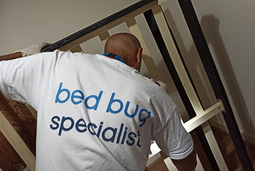 How do I stop bed bugs from spreading