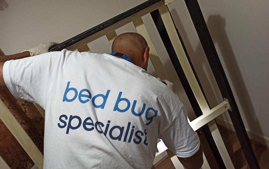Bed bug Specialist London